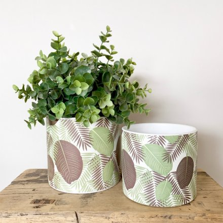 A chic ceramic planter with a colourful leaf design featuring ferns.