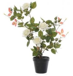 Set within a plastic pot, this tall standing Artificial Rose Bush will be sure to add a traditional and timeless feel