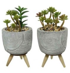 these concrete based pots with wooden legs will be sure to add a trendy touch to any windowsill or shelf