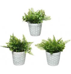 A mix of artificial shrubs planted within assorted patterned pots with a distressed decal