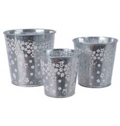 A set of 3 zinc planters, each with a dainty daisy pattern.