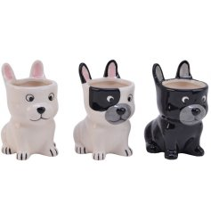 An adorable assortment of dog shaped planters, each set with its own decals