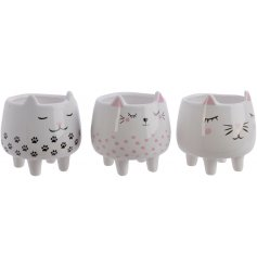 An adorable assortment of kitty shaped planters, each set with its own decals