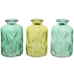 Each set with its own Greenery themed colour, these glass vases also feature Ridged Leaf decals