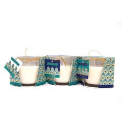 A mix of 3 scented candles set within classic glass pots. Each has a luxury peacock feather wrap and tag.