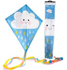 A cute plastic kite that will be sure to keep kids entertained on a windy day!