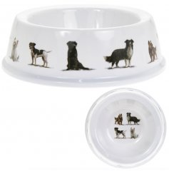A stylish dog bowl featuring a variety of popular dog breeds.
