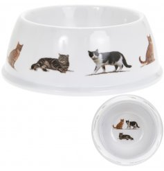 Feed your furry companions in style with this chic cat bowl featuring a variety of popular breeds.