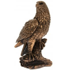 A fine quality, beautifully crafted bronze eagle figure from our popular reflections range.