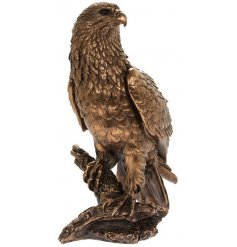 A fine quality, beautifully crafted eagle figure from our popular reflections range.