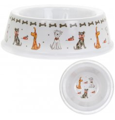 A cute plastic bowl, covered with a quirky dog cartoon