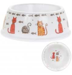 A cute plastic bowl, covered with a quirky cat cartoon