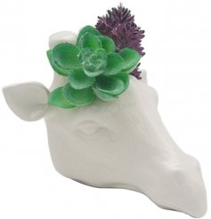 Contemporary white ceramic garden wall planter in the shape of a giraffe head