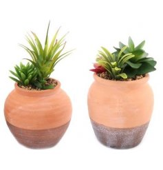 A mix of bright blooming artificial succulents, perfectly placed into round terracotta pots