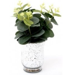 A charming bunch of artificial Eucalyptus Leaves placed within a silver speckled vase