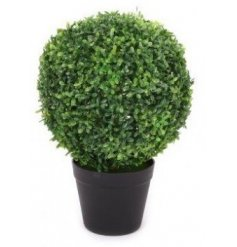 Perfect for placing on any shelf or windowsill in the home, this small potted topiary is perfect for any themed space