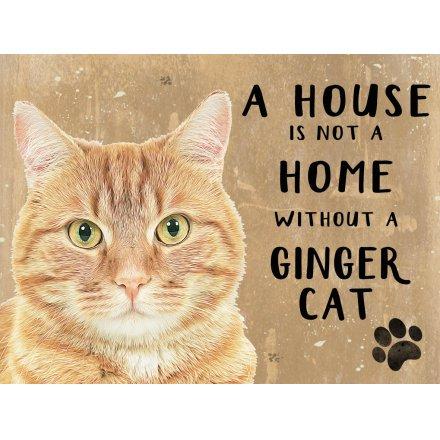 House Not A Home Fridge Magnet - Ginger Cat