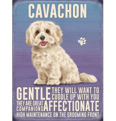 A metal sign featuring an adorable Cavachon Decal