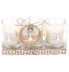 A sweetly scented set of candles featuring an etched silver tree decal