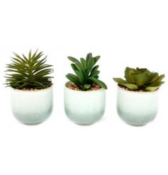 A mix of ceramic pots filled with artificial succulents,