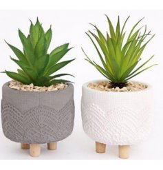 Perfect for window sills in any home! this assortment of Grey and White pots featuring a Macrame decal