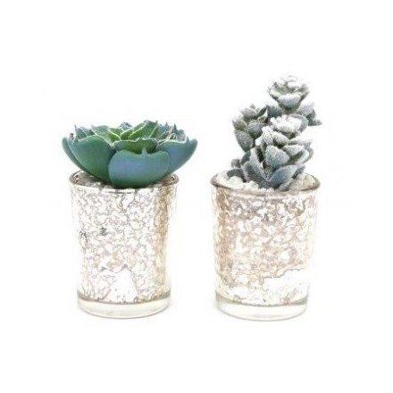 Wintered Artificial Succulent Pots, 11cm
