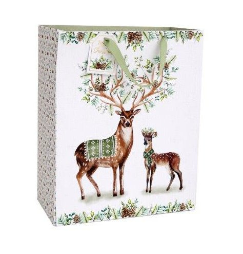 A woodland themed gift bag with an added sage green surrounding tone and matching gift tag