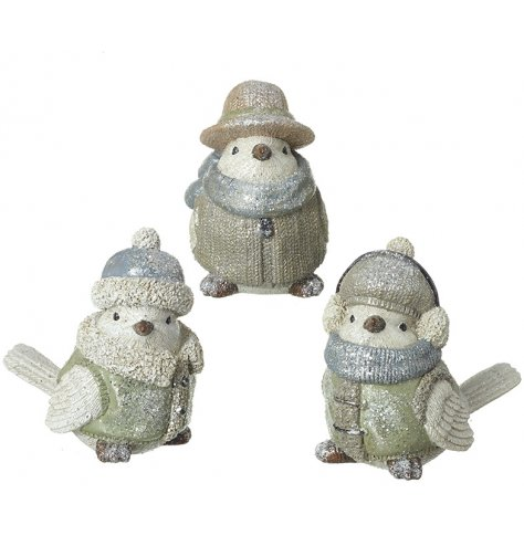 Charming and unique festive birds dressed in winter jackets and hats. Complete with a sprinkling of glitter.