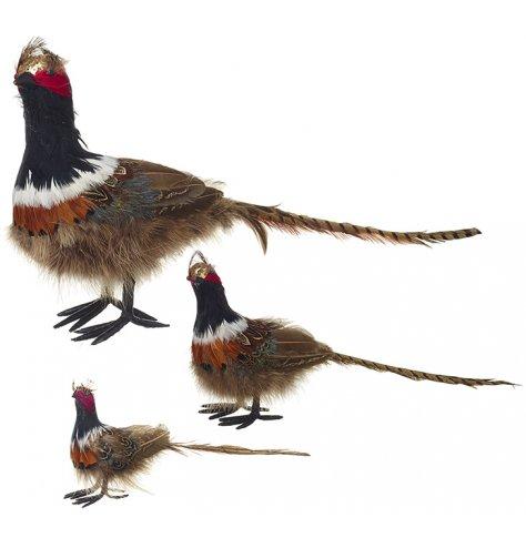 A set of three luxury pheasant decorations with richly coloured feathers and a touch of festive gold.