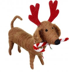 A cute little felt sausage dog complete with a candy cane and antlers!