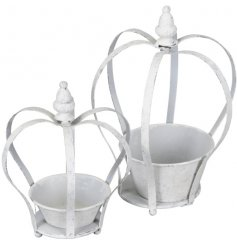 A set of assorted sized planters with added crown shaped surrounds and a distressed white wash finish