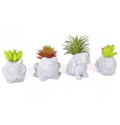 A mix of concrete Animal Pots each filled with its own artificial succulent