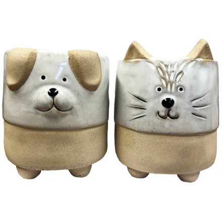 Assorted Planters With Ears and Feet, 8.5cm