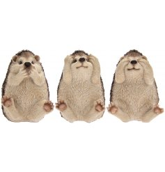 Sure to add a delightful charm to any garden space, this mix of cutely posed hedgehogs