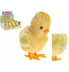 A wind-up bouncing chick, perfect pocket money gift for Easter.