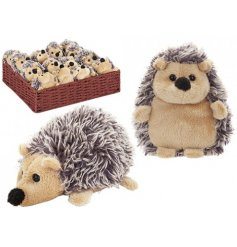An assortment of 2 plush hedgehog toys with display basket.