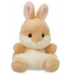 A small and cute soft toy from the Palm Pal Range
