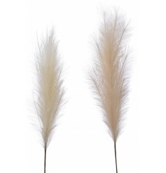 this assortment of tall fluffy Plume stems will be sure to add a luxe touch to any home