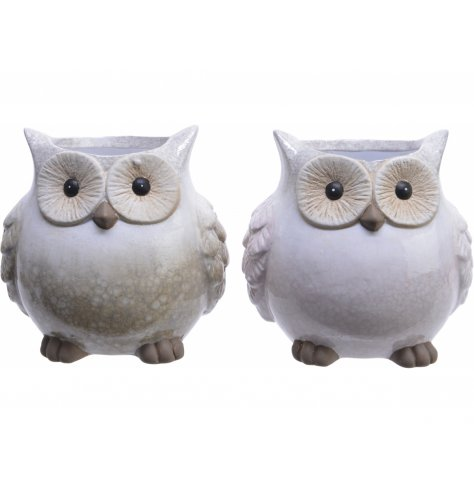 Smooth glazed neutral owl planters made from terracotta.