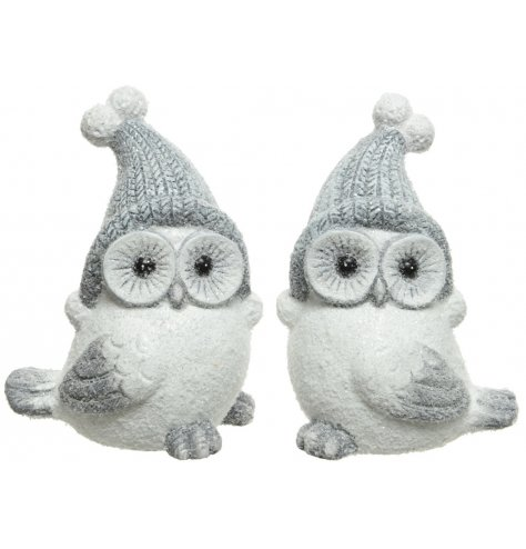 Two assorted snowy winter owls with wide eyes. Beautiful winter wonderland decorations.