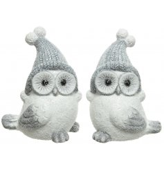 A festive and glittery themed assortment of wide eyed owl decorations with added winter hats