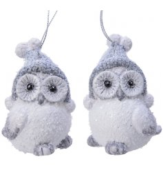 An assortment of wide eyed hanging terracotta owl decorations, covered with a glittery frosted finish