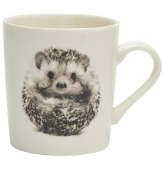 A sleek white toned ceramic mug featuring an adorable printed hedgehog decal