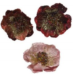 Beautiful accessories to add to any tree display at Christmas Time, a mix of 3 velvet fabric rose clips with added glit