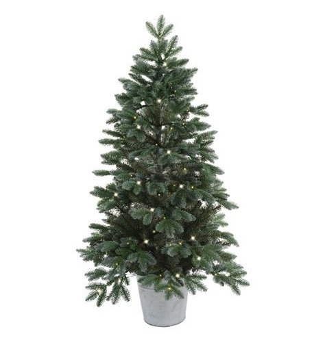 A Trondheim spruce tree in a zinc bucket with 100 LED lights.