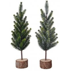 A charming and simple assortment of snowy green and natural looking Mini Trees set on Bark Bases