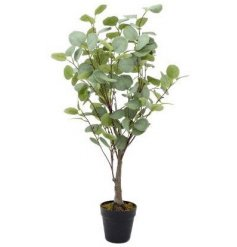 A fine quality, on trend artificial eucalyptus tree with a black plant pot.