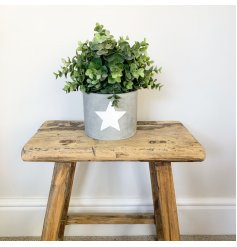 Stay on trend with this rough luxe cement planter, complete with a painted white star detail.