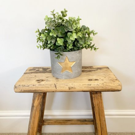 A rustic cement planter with a gold painted star. A rough luxe decorative accessory for the home.
