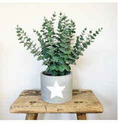 A chic cement planter with a painted white star. A large decoration for the home.